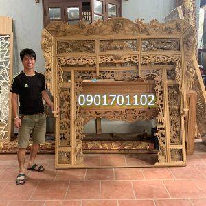 Thiều châu gỗ dổi